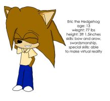 THE NEW ARK THE HEDGEHOG by e-rock95