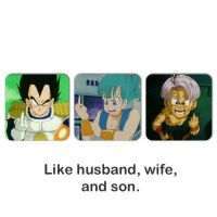 Like husband, Wife, and Son! Dragon Ball~ by princesszeldaxlink