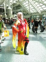 Anime Expo 2014 3 by iancinerate