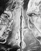 Harry vs Voldemort by cookiemonster1597
