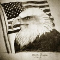 Bald Eagle by DevonDavis