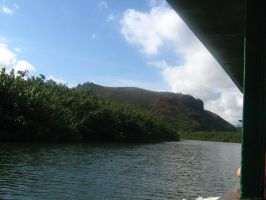 tropical river view 09 by CotyStock