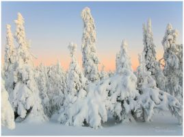 Sunrise in Ruka I by closer-to-heaven