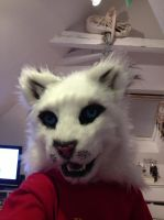 My new fursuit by WithCandyDancing