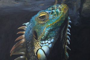 Iguana Painting by kupo34