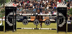 show jumping 116 by JullelinPhotography