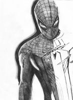 The Amazing Spider-man by MichaelWarrenTaylor