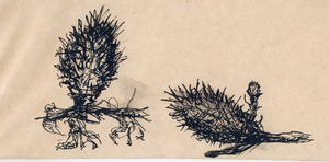 Prickly plant sketch by VLStone