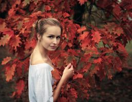autumn colours by baravavrova