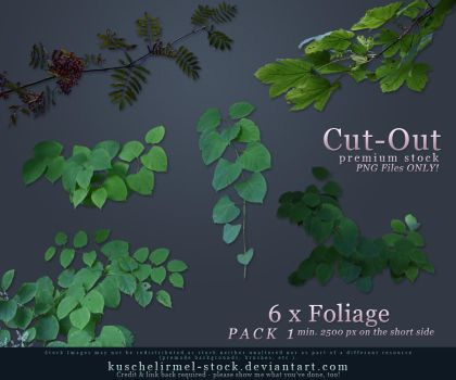Foliage Pack 1 Cut-Out Stock by kuschelirmel-stock