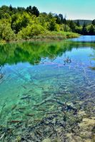 Plitvice lakes by Alouette-Photos