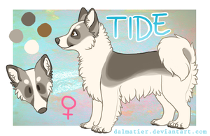 Tide Reference Sheet 2015 by dalmatier