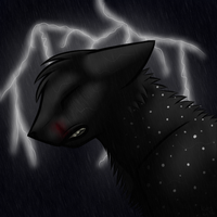 :AT: Shadowrain by Icefrostcat