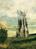 big tree by stormlightloren