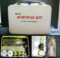 Vault Tech Survival Kit by RabidIga