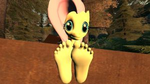 Fluttershy Feet in the forest by hectorlongshot