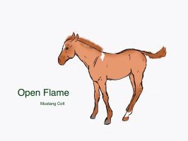 Open Flame by silvershore