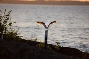 The seagull has landed by SanctuaryWarrior