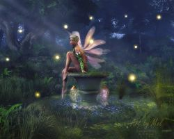 Enchantment - Fairy Dreams by MCKrauss