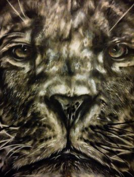 Lion by Kaneburgness