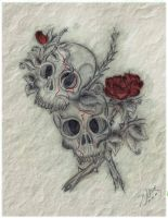 skulls and roses by KillBerries