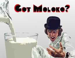 Got Moloko? by 1100AM