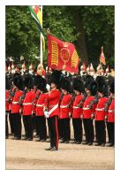 Trooping The Colour - 8 by syphonvector