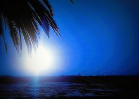 Blue Hawaii by montag451