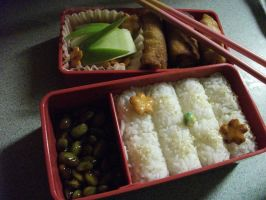 My First Bento by IoniaFreak