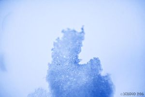 Ice 1 by PhotographybyVictor