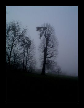 The Fog by zaneen