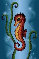 Seahorse by PeziCreation