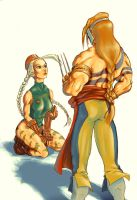 Cammy and Vega-Balrog by Jaquio