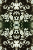 Decorative pattern by in2ni