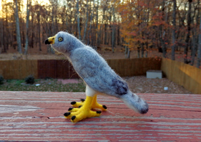 Needle Felted Marsh Hawk by DancingVulture