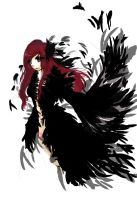 black feather by CNsArto