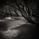 After the flood by etchepare