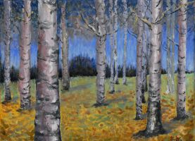 Birches by CarlaCmr