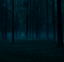 Froest Premade Background by SamKross-Stock