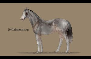Thoroughbred Commission #10 by Jullelin