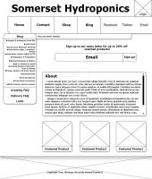 Web Page Home - WireFrame by TempesTNatioN