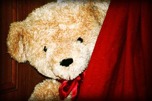 Teddy Bear Hide and Seek by perfect12386