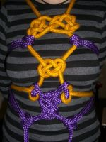 Gold and Purple Shibari by Ange1ica