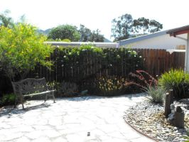 Relandscaped front yard by DRACON72
