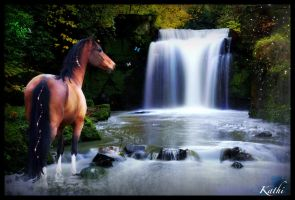 horse water by Kathamausl