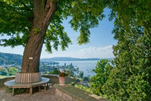 View to Lake Bodensee by ErwinStreit