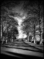 Shadows on the driveway by Ph0t0-girl