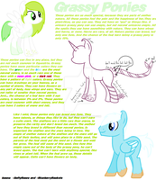 New MLP: Fim species: Grassy Ponies by KatrueYumeNikki