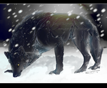 .:PA:Black wolf in White land:. by Mayasacha