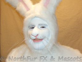 Rabbit Nose by NorthFurFX